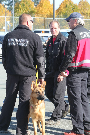 https://www.thevalleyvoice.ca/story%20photographs/October%202013/Chilliwack%20Search%20and%20Rescue%202013%20SARScene%20-%20October-30-2013/SAR-rescue-dog.JPG
